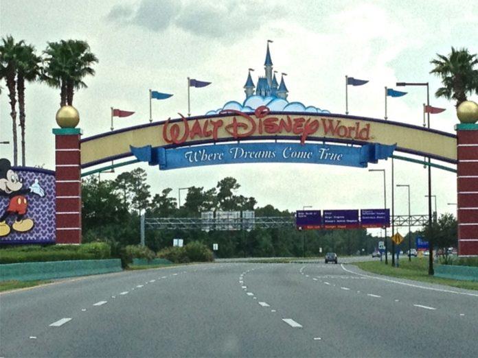 Walt Disney World Disney College Program ZagLeft
