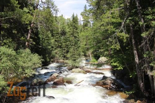 Calypso Cascades trail stream from ZagLeft