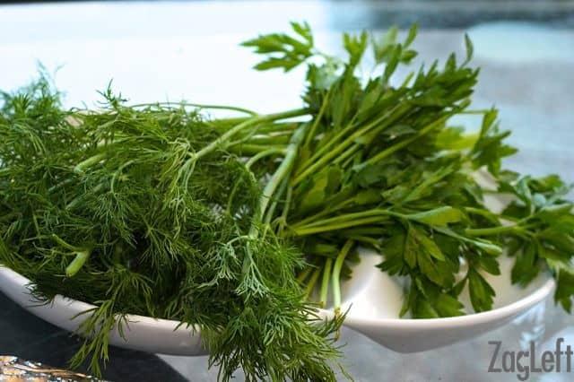 Mediterranean Orzo Salad - parsley and dill - zagleft